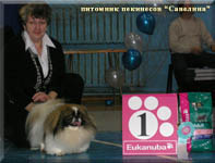13.02.10 Best of Breed, Best of GROUP and new Champion of Russia - Savelina Da-Nit High Ball!